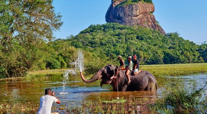 """Onderzoek: """"Toeristen zien negatieve effecten wildlife-toerisme niet in"""""""